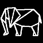 np_elephant_954074_FFFFFF